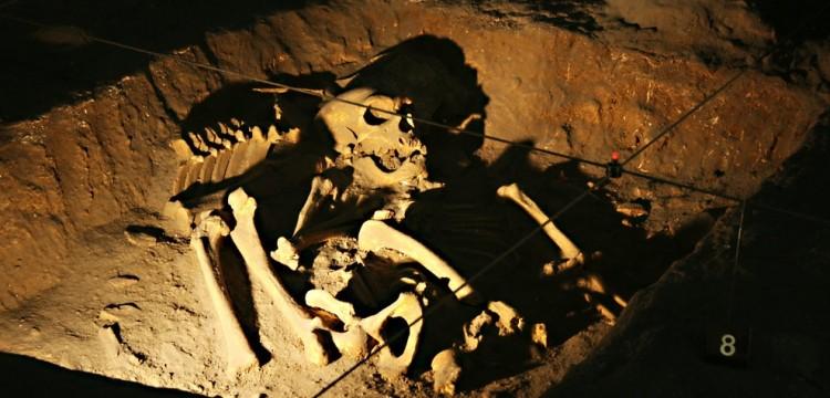 В Великобритании на поле для гольфа нашли редкое захоронение с топором бронзового века