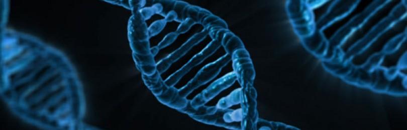 В Млечном Пути может быть новая форма жизни с инопланетной ДНК