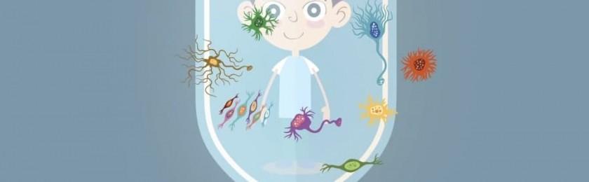 Иммунная система новорожденного слабая не зря