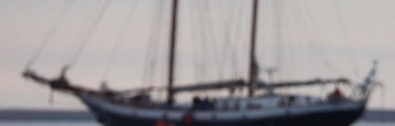 Эксперты обнаружили судно «Енисей», которое затонуло в XIX веке в районе Новой Земли