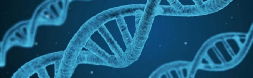 Ученые установили, как часто мутирует каждый ген при всех видах рака