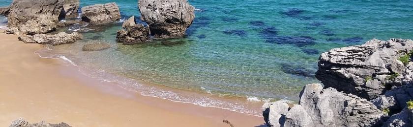 В Испании на пляже найдены древние отпечатки следов новорожденных слонов вымершего вида