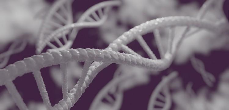 Ученые: В древних останках динозавра могла сохраниться ДНК