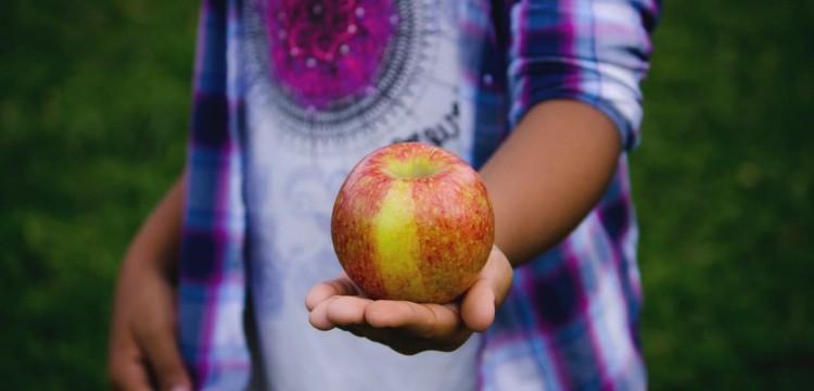 Правительства всех стран начнут слежку за питанием детей